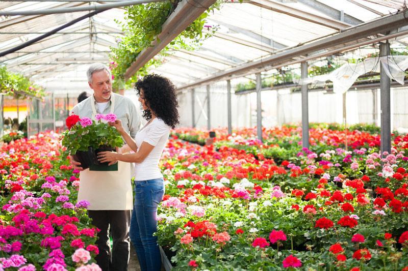 ogrodnik rozmawiający z klientką w ogrodzie pełnym kwiatów
