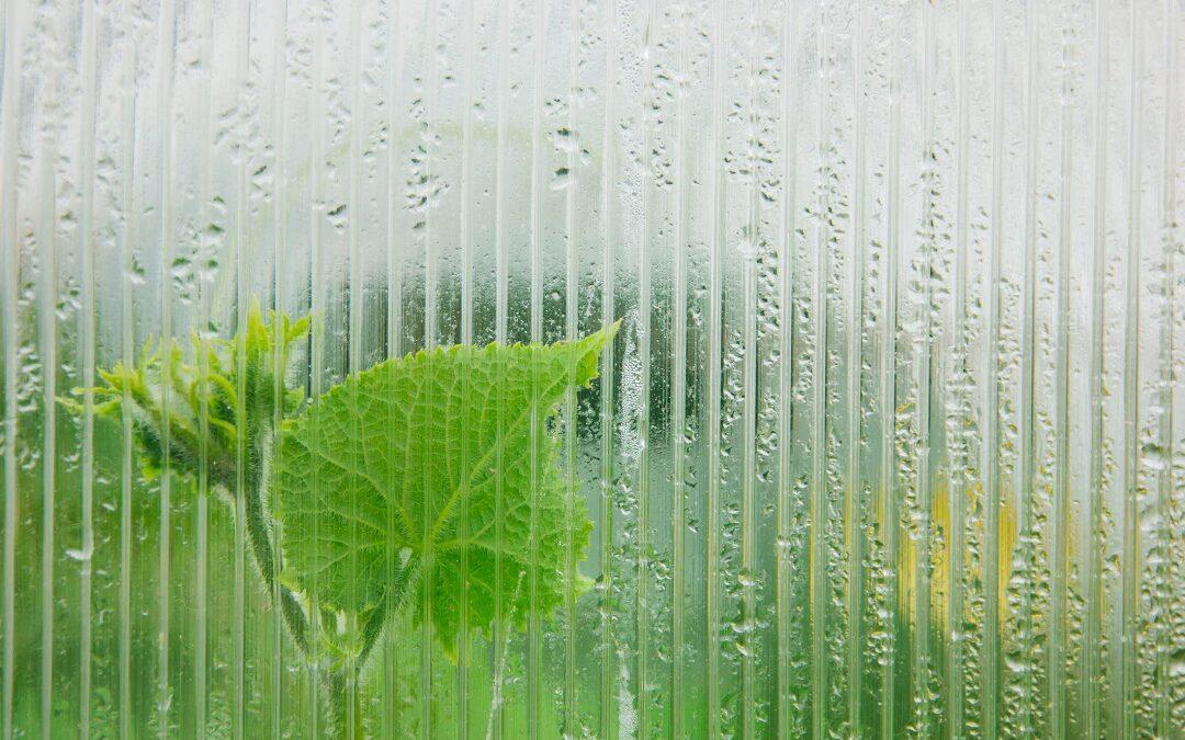 Nawilżanie powietrza w rolnictwie