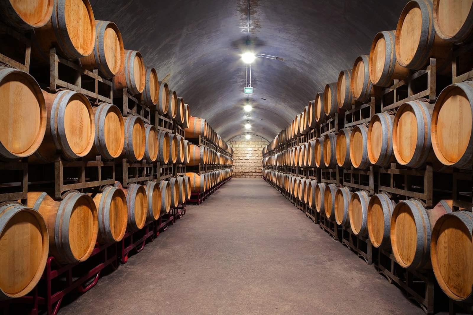 Nawilżanie powietrza w przemyśle winiarskim